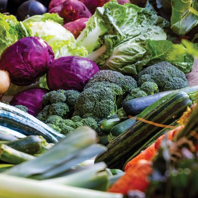 Martin Riendeau Gardens | Varieties of seasonal vegetables with mixes colors